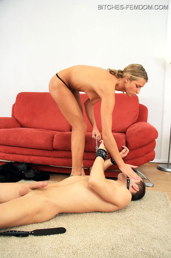 Free female domination male slave galleries